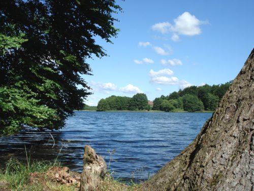 wh-saengerslust_2010-landschaft-zenssee-wasser-nr-008-3556x2528