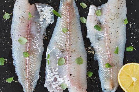 Uckermärkische Entdeckungen – Fischspezialitäten